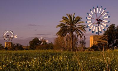 Neue Hoffnung für die Windmühlen bei Palmas Flughafen